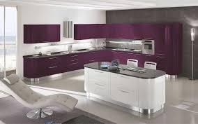 cuisine des aubergines cuisine ã quipã e violet galerie avec equipee couleur équipée