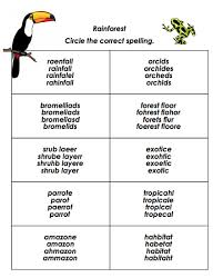 circle and spell tool create custom worksheets for your class