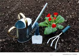 flower and garden tools picture