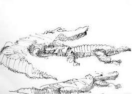 drawings u2013 alix hallman travis