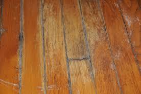 floor black mold wood floor stylish on floor for 16 black mold