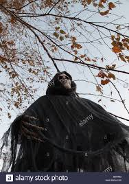 halloween decorations hanging from tree stock photo royalty free