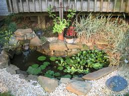 ok looked thru pics please help me build a small pond for