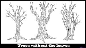 drawing a tree without leaves kids drawing coloring page coloring