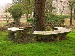 the 25 best tree bench ideas on pinterest tree seat yard