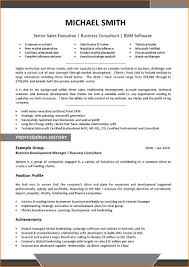 Resume Samples Sales Executive by Sales Executive Resume Sample Download Free Resume Example And
