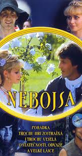 Three Wishes Video 1989 Imdb by Nebojsa 1989 Imdb