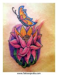 lotus flower butterfly 9