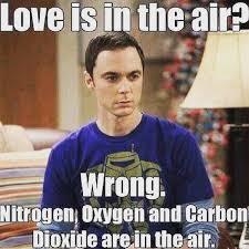 Sheldon Meme - best 25 sheldon meme ideas on pinterest pics of dinosaurs the