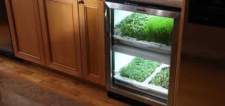kitchen herb garden residential urban cultivator