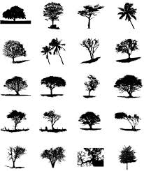 big tree silhouette 02 vector free vector in adobe illustrator ai