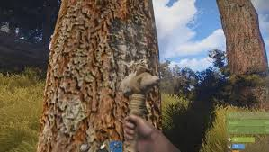 chopping trees in survival ranked from worst to least
