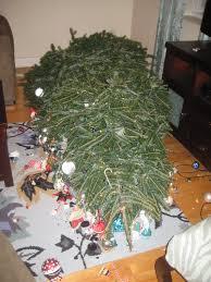 broken ornaments dresses and desserts