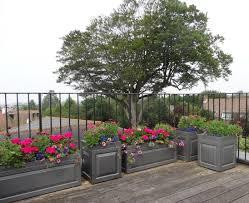 water trough planter sloane planter