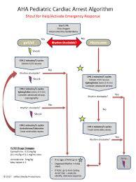 ventricular fibrillation learn u0026 master acls pals