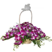 Flower Orchid Send Flowers To Chennai Orchids Flowers To Chennai Flowers