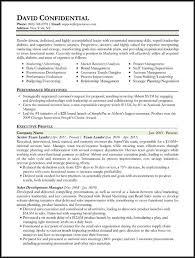 executive resume templates hybrid resume template nardellidesign