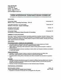youth counselor resume sample entry level administrative