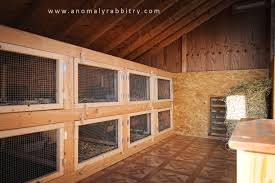 Plans For Building A Rabbit Hutch Outdoor Decorating Rabbit Hutches And Housing With Two Story Rabbit
