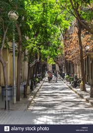 adults walk together along a narrow tree lined in barcelona