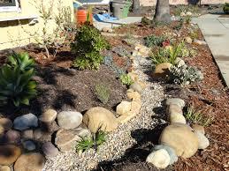 native drought tolerant plants surfwriter girls let your garden go native