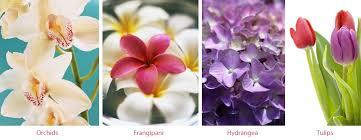 Wedding Flowers In October The Ultimate Wedding Flower Guide Inmotion Flowers