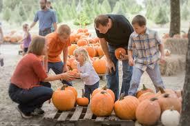 florida resident halloween horror nights code orlando pumpkin patches u0026 mazes orlando on the cheap