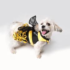 Puppy Halloween Costumes 79 Pet Halloween Costumes Images Pet Costumes