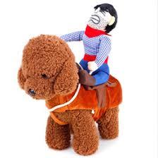 Horse Halloween Costumes Sale Discount Horse Ride Costume 2017 Horse Ride Costume Sale