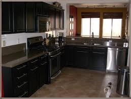 Kitchen Cabinets On Ebay by Kitchen Cabinet Handles Ebay U2013 Naindien