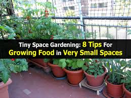 garden design with tiny space gardening tips for growing food in
