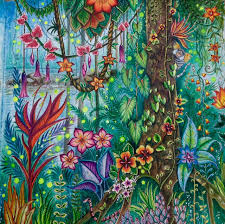 pin by rachel wentworth on coloring magical jungle pinterest