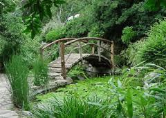 Zilker Botanical Garden Isamu Taniguchi Japanese Garden
