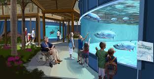 clearwater aquarium unveils streamlined plans