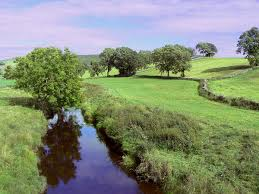 River Bain, North Yorkshire