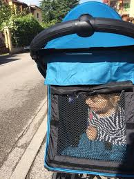 cuisine cryog駭ique 21 best city mini zip images on zip baby jogger and