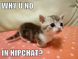 Hipchat Meme - why u no in hipchat cheezburger funny memes funny pictures