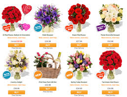 Flower Promotion Codes - arena flowers discount coupon april 2014 promo codes finder com uk