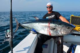 northeast offshore fishing report july 23 2015 on the water