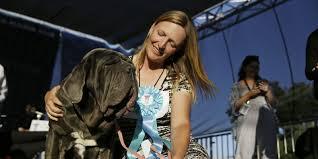 Ugliest World U0027s Ugliest Dog U2013 What Is The World U0027s Ugliest Dog All News