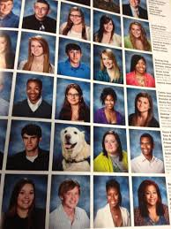 high school yearbooks photos 20 greatest yearbook trolls of all time photos