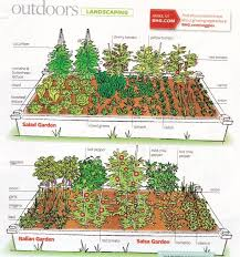 Fruit And Vegetable Garden Layout Raised Bed Vegetable Garden Layout Dunneiv Org