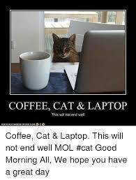 Cat Laptop Meme - coffee cat laptop this will not end well coffee cat laptop this