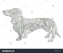 dachshund dog coloring page stock illustration 391701406