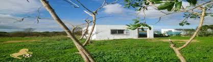 Haus Zu Kaufen Gesucht Von Privat Strandgazette Immobilien Immobilien An Der Costa De La Luz