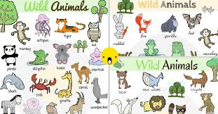 wild animals images Wild animals vocabulary in english learn wild animal names 7 e s l jpg