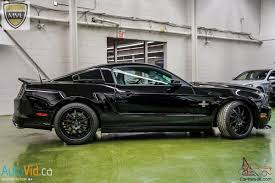 mustang shelby snake for sale mustang shelby gt500 snake
