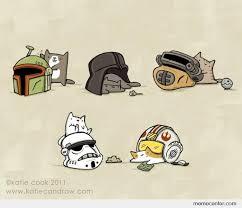 Star Wars Cat Meme - cats in star wars helmets by ben meme center