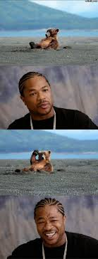 Yo Dawg Know Your Meme - 25 best memes of 2009 holytaco
