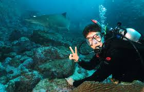 padi advanced open water course jettydive